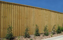 Lapped and Capped Timber Fence