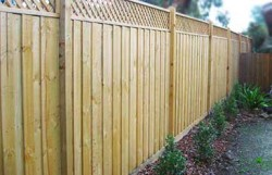 Timber Lattice Top Fence