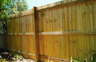 Standard Pailing Fence