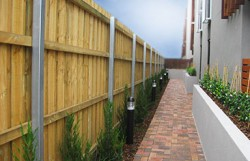 Steel Pailing and Treated Pine Fence